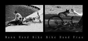 mann-hund-bike-bike-hund-frau-de7ba211-0039-4727-aff0-5df4d102f2a5